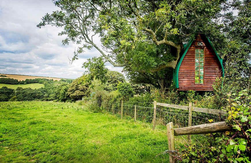 airbnb-casa-na-arvore12
