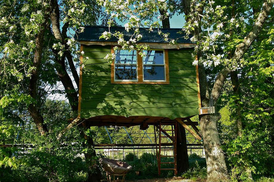 airbnb-casa-na-arvore16
