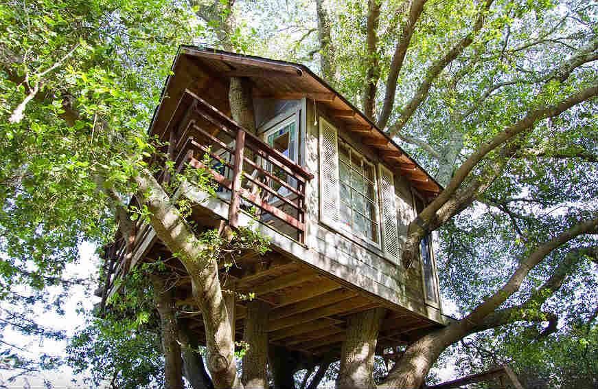 airbnb-casa-na-arvore19