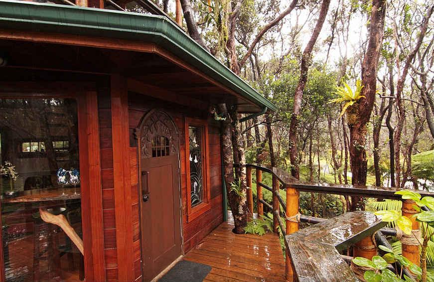 airbnb-casa-na-arvore20
