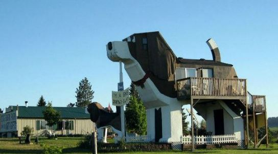 O prédio é um beagle gigantesco – o maior que existe – situado na cidade de Idaho. Um deck leva ao interior do au-au, onde os visitantes dormem e comem. A cabeça do cachorro é um espaço confortável, uma bela sala, onde mais gente pode dormir, e dá para se recostar na curva do focinho.