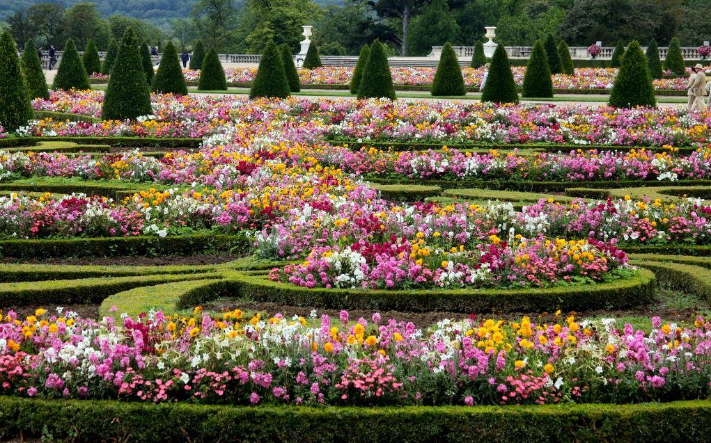 Jardim montado com vasos de flores - Versailles
